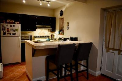 Dutchess County, Orange County, Sullivan County, Ulster County Rental For Rent: 10 North Clover #1