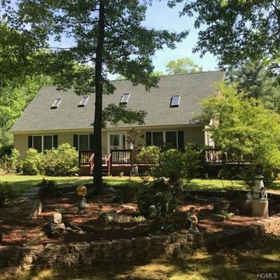 Napanoch Single Family Home For Sale: 220 Steven Street