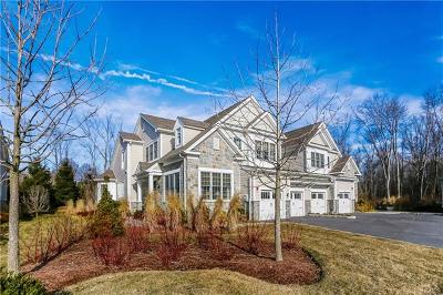 Rye Brook Single Family Home For Sale: 3 David Lane