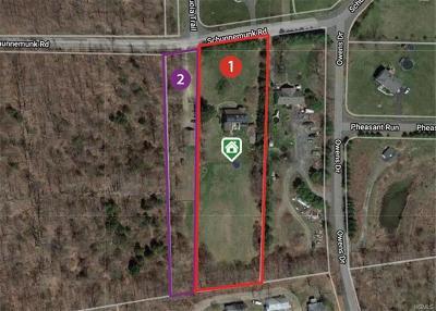 Highland Mills Single Family Home For Sale: 233 Schunnemunk Road