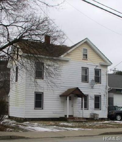Port Jervis Single Family Home For Sale: 151 West Main Street