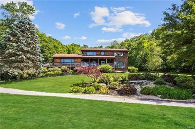 Dutchess County Single Family Home For Sale: 263 Holmes Road