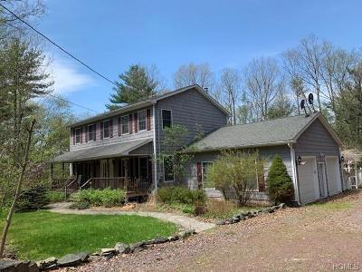 Narrowsburg Single Family Home For Sale: 49 Perry Pond Road