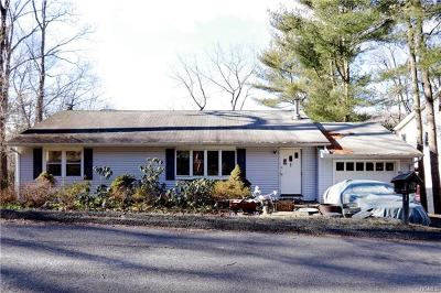 Rockland County Single Family Home For Sale: 9 Birch Road