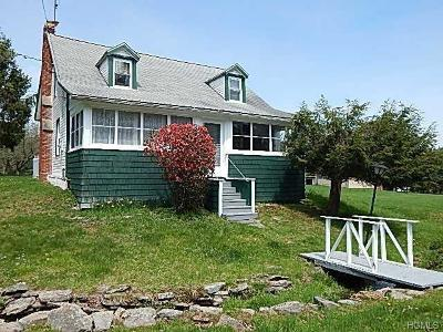 Narrowsburg NY Single Family Home For Sale: $54,900