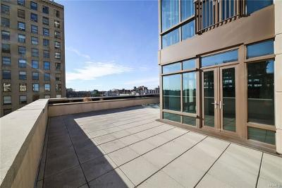 New Rochelle Condo/Townhouse For Sale: 175 Huguenot Street #706
