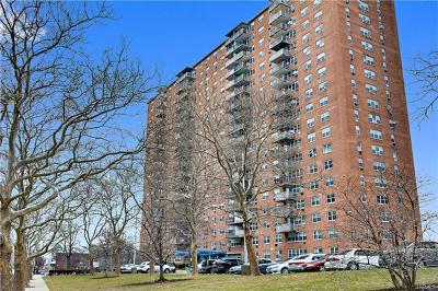 Co-Operative For Sale: 875 Morrison Avenue #15E