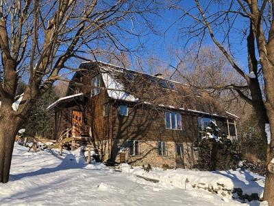 Wallkill Single Family Home For Sale: 20 Campfire Road