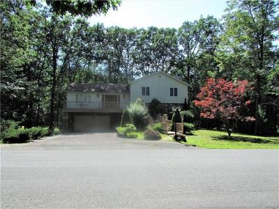 Sullivan County Single Family Home For Sale: 4 Pond Lane