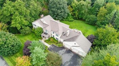 Rye Brook Single Family Home For Sale: 18 Hillandale Road