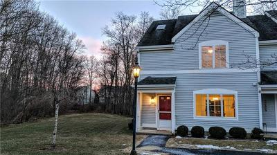 Carmel Condo/Townhouse For Sale: 301 Chestnut Drive