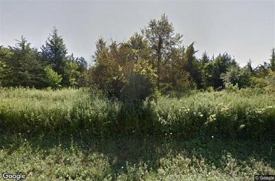 Dutchess County Residential Lots & Land For Sale: 7204 Albany Post Road