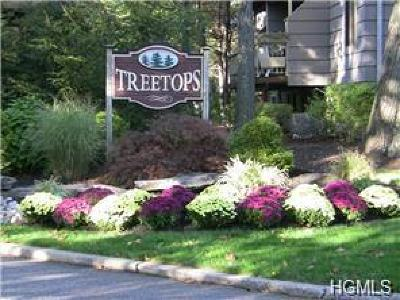 Nanuet Condo/Townhouse For Sale: 124 Branchwood Lane