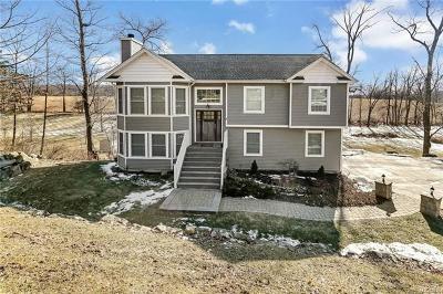 Goshen Single Family Home For Sale: 4 Chestnut Lane
