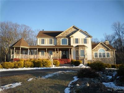 Port Jervis Single Family Home For Sale: 89 Morgan Way