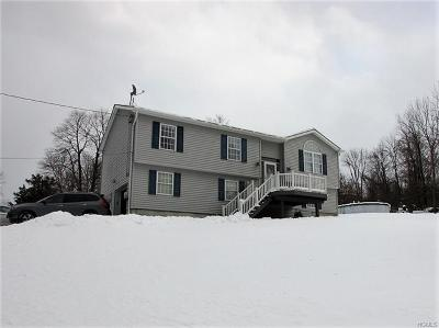 Newburgh Single Family Home For Sale: 45 Holmes Road