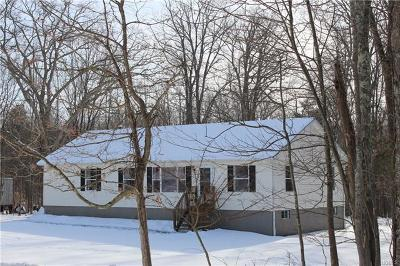 Middletown Single Family Home For Sale: 738 Manning Road