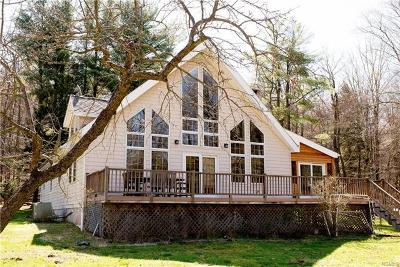 Livingston Manor Single Family Home For Sale: 368 Fox Mountain Road