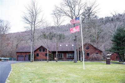 Sullivan County Single Family Home For Sale: 703 Hazel Road