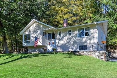 Chester Single Family Home For Sale: 233 Bull Mill Road