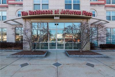 White Plains Condo/Townhouse For Sale: 300 Mamaroneck Avenue #817