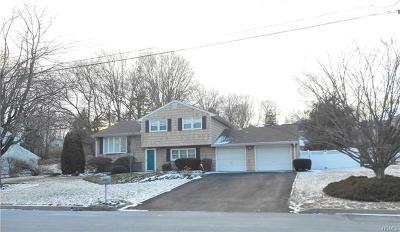 Pearl River Single Family Home For Sale: 45 Lark Street