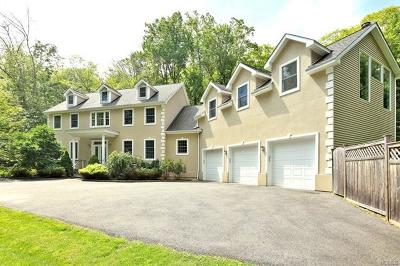Putnam Valley Single Family Home For Sale: 85 Horton Hollow Road