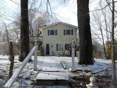 Putnam County Single Family Home For Sale: 100 Slater Road