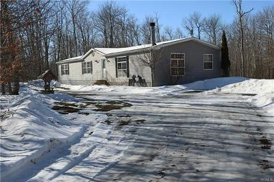 Livingston Manor Single Family Home For Sale: 536 Fox Mountain Road