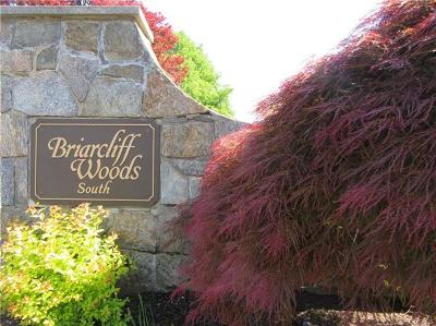 Ossining Condo/Townhouse For Sale: 7 Briarcliff Drive South #10