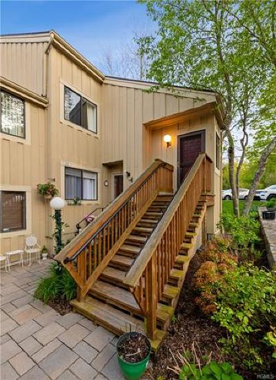 Westchester County Condo/Townhouse For Sale: 213 Lakeside Drive