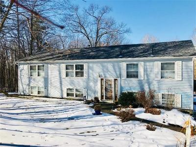 Wallkill Single Family Home For Sale: 209 Freetown Highway