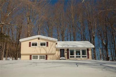 Hurleyville NY Single Family Home For Sale: $187,500