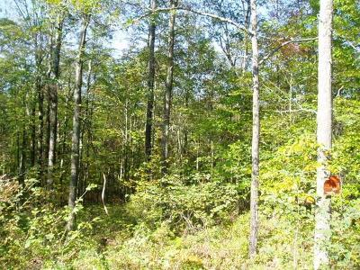 Residential Lots & Land For Sale: Lenne Lenape Road