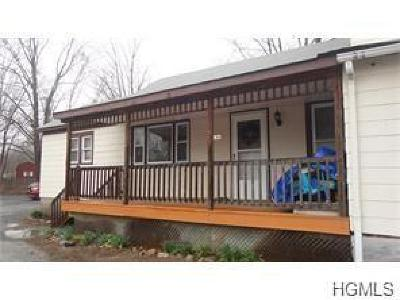 Wurtsboro Rental For Rent: 169 Sullivan Street #B