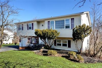 Rockland County Single Family Home For Sale: 5 Skyline Drive