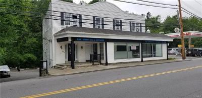 Mount Kisco Commercial For Sale: 507 East Main Street