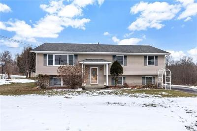 Washingtonville Single Family Home For Sale: 44 Bull Road