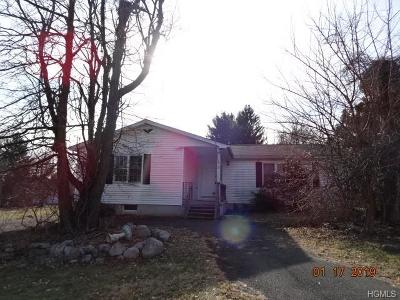 Rock Tavern Single Family Home For Sale: 3 Bittles Place