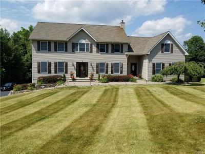 Washingtonville Single Family Home For Sale: 3 Madisyn Avenue