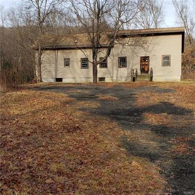 Stone Ridge Single Family Home For Sale: 44 Osterhoudt Lane