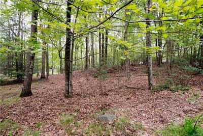 Sullivan County Residential Lots & Land For Sale: 00 Pond Lane