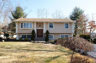 Rockland County Single Family Home For Sale: 48 Lakeland Avenue
