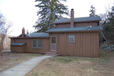 Putnam County Single Family Home For Sale: 2641 Route 301
