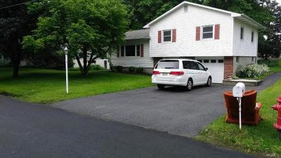 Orange County, Sullivan County, Ulster County Rental For Rent: 20 Brewster Drive