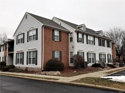 Washingtonville Condo/Townhouse For Sale: 109 Cartwheel Court #21