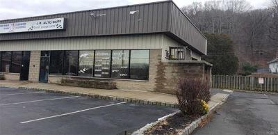 Pomona Commercial For Sale: 11 Old Route 202a