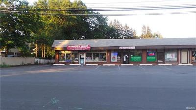 Blauvelt Commercial For Sale: 549 Western Highway