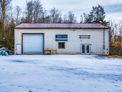 Monticello Commercial For Sale: 299 Starlight Road