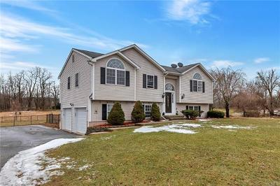 Single Family Home For Sale: 856 County Route 17